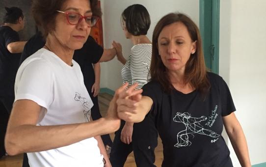 Tui Shou - combinação de precisão, leveza e sintonia entre os praticantes.